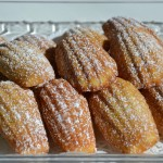 Tray of Madeleines